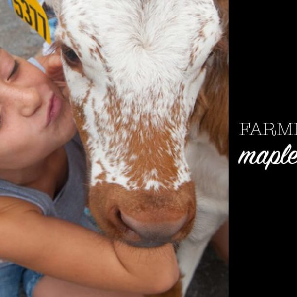 Farmer Friday: Mapleview Dairy