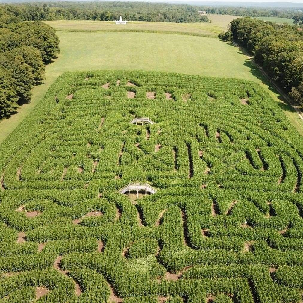 A-Mazing Corn Mazes at Cabot Farms